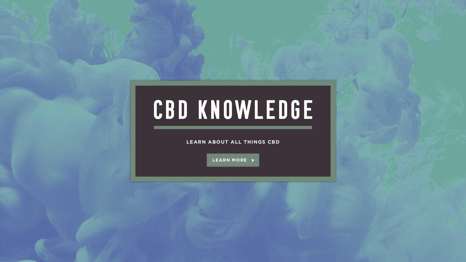 Learn about all things CBD at mondocbd.co.uk